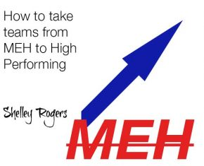 178 – Jeffrey Davidson – How to Take Teams From MEH to High Performing